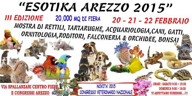 Esotika-Arezzo-2015-1
